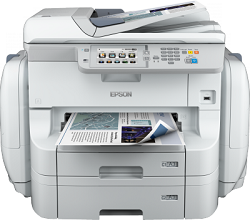 Epson WorkForce Pro WF-R8590 DTWF